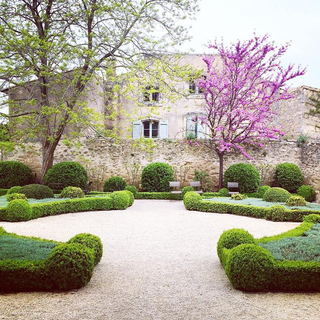 travel_josephine_provence_franta_menerbes_maison_de_la_truffe