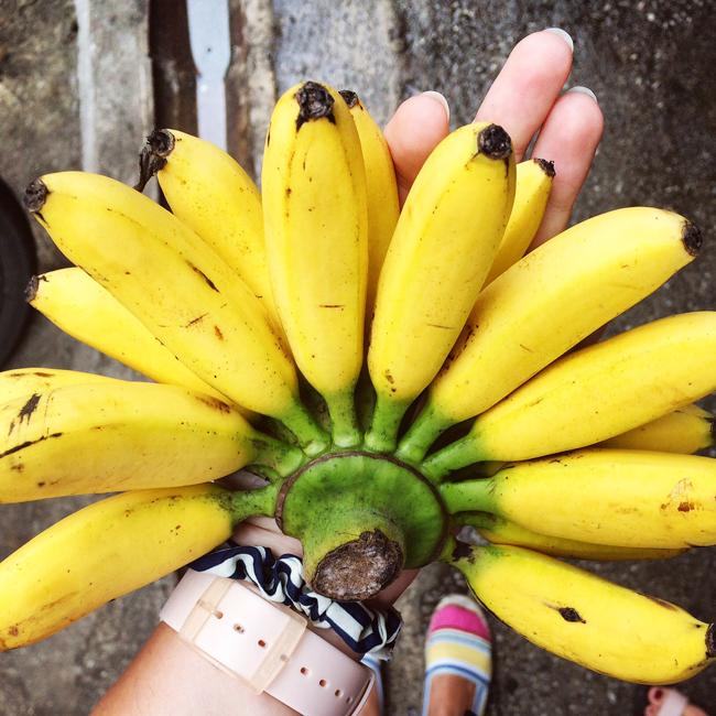 travel_josephine_malaezia_kuala_lumpur_chow_kit_wet_market_banane