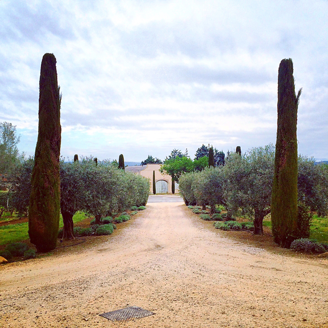 travel_josephine_provence_franta_menerbes_domaine_de_la_citadelle_podgorie